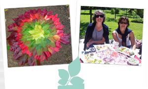 Cuisiner des fleurs ou s'initier au land art en Ille et Vilaine