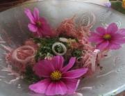 Atelier cuisine de fleur et landart