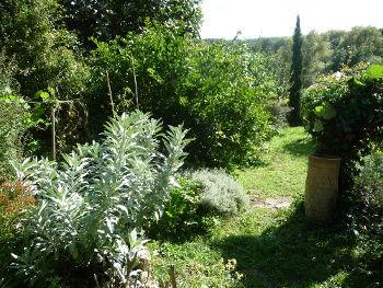 Le jardin des douces angevines à Soucelles